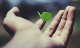 Porter la vie par Ravi Roshan (unsplash.com)